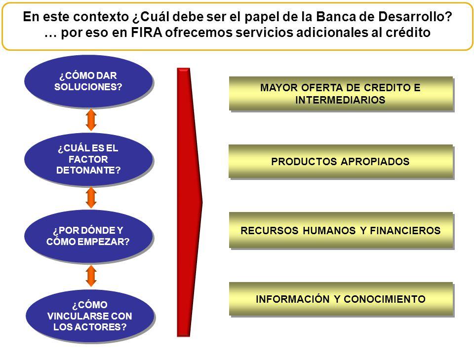 En este contexto ¿Cuál debe ser el papel de la Banca de Desarrollo? … por eso en FIRA ofrecemos servicios adicionales al crédito ¿CÓMO DAR SOLUCIONES?