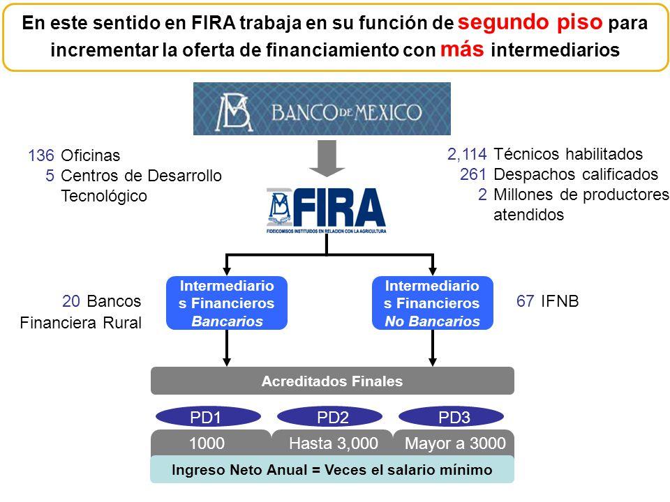 Intermediario s Financieros Bancarios Intermediario s Financieros No Bancarios Acreditados Finales PD1PD2PD3 Ingreso Neto Anual = Veces el salario mín