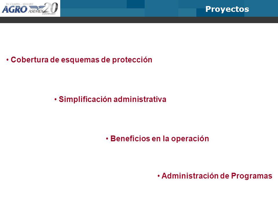 Proyectos Cobertura de esquemas de protección Simplificación administrativa Beneficios en la operación Administración de Programas