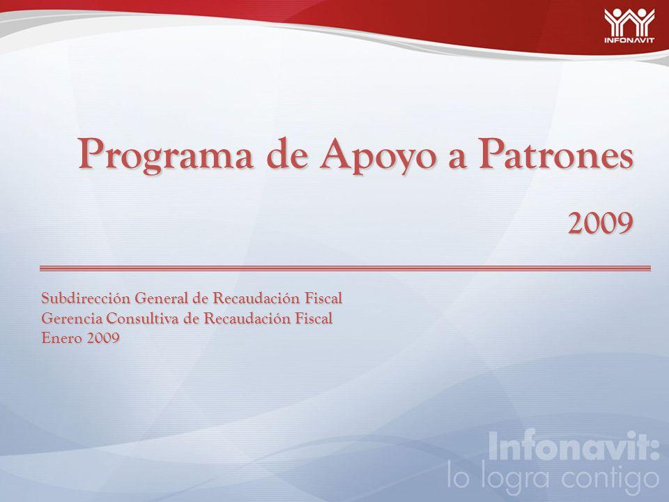 Programa de Apoyo a Patrones 2009 Subdirección General de Recaudación Fiscal Gerencia Consultiva de Recaudación Fiscal Enero 2009
