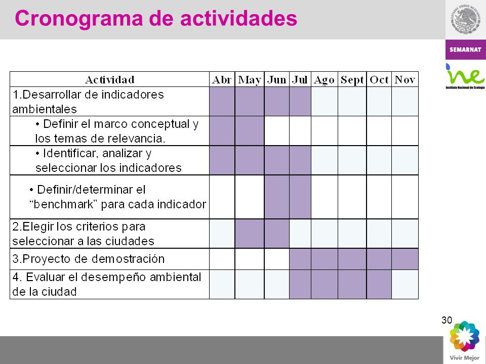 30 Cronograma de actividades