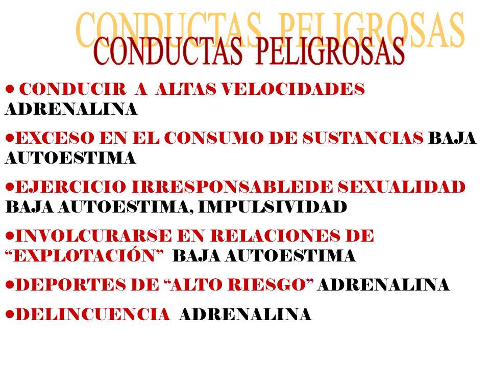 CONDUCIR A ALTAS VELOCIDADES ADRENALINA EXCESO EN EL CONSUMO DE SUSTANCIAS BAJA AUTOESTIMA EJERCICIO IRRESPONSABLEDE SEXUALIDAD BAJA AUTOESTIMA, IMPUL