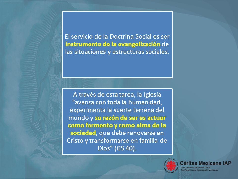 El servicio de la Doctrina Social es ser instrumento de la evangelización de las situaciones y estructuras sociales.