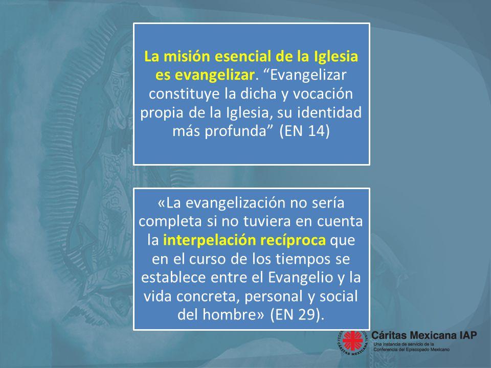 Entre evangelización y promoción humana (desarrollo, liberación) existen efectivamente lazos muy fuertes.