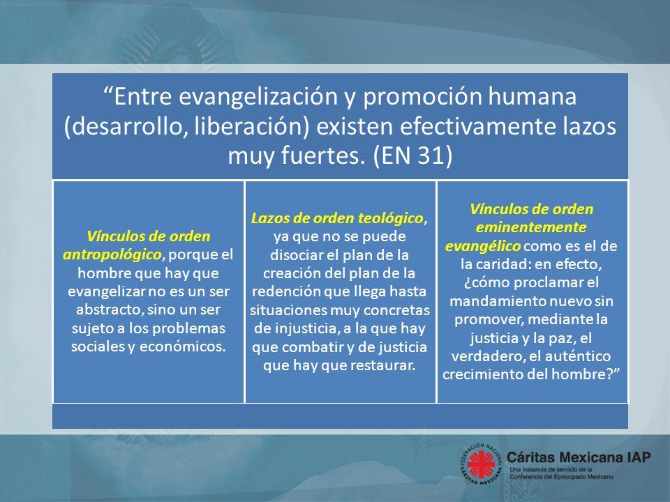 La Iglesia tiene la tarea de evangelizar las realidades sociales.