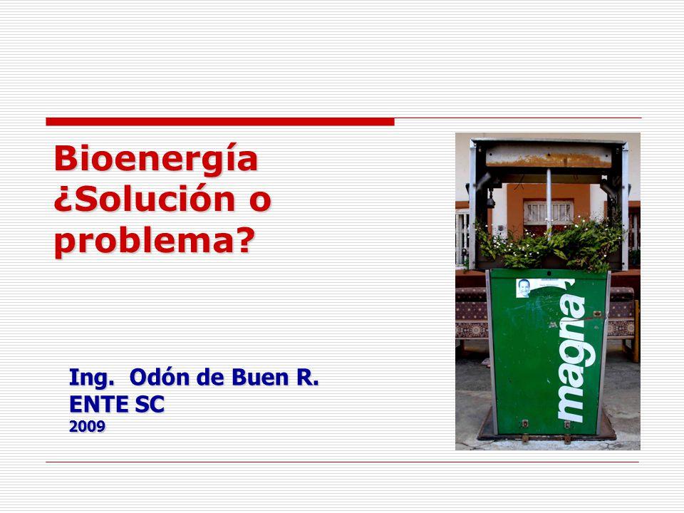 Etanol en México (BID-GTZ) Producción de 59.3 millones de litros actualmente Rentable para caña de azúcar y más para precios mayores a 0.55 US$/litro Sustituir MTBE 411.9 miles de m3/año (año 2012) Sustitución en 10% 4,406.3 miles de m3/año Para agregar 20% de etanol en las gasolinas que se consumen en el DF, Guadalajara y Monterrey se necesitan del orden de 400,000 hectáreas con la productividad de Brasil.