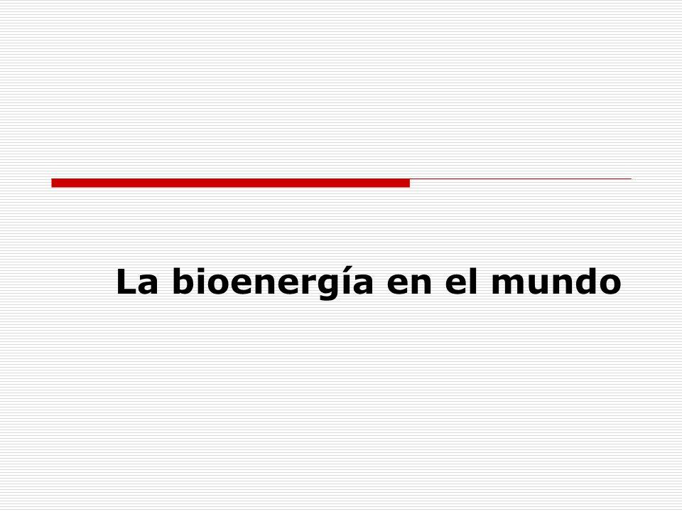 La bioenergía en el mundo