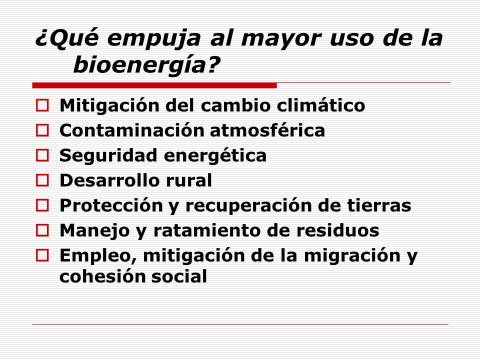 ¿Qué empuja al mayor uso de la bioenergía.