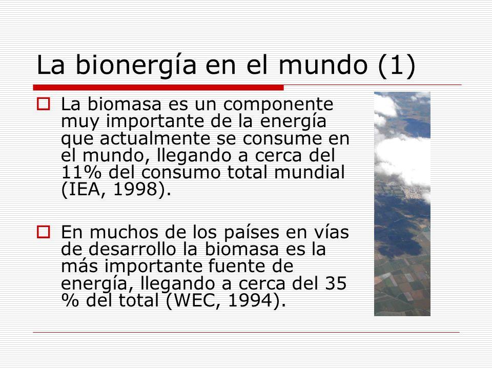 La bionergía en el mundo (1) La biomasa es un componente muy importante de la energía que actualmente se consume en el mundo, llegando a cerca del 11% del consumo total mundial (IEA, 1998).