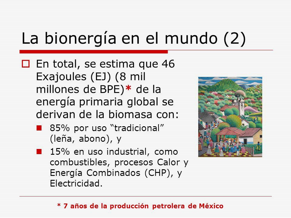 La bionergía en el mundo (2) En total, se estima que 46 Exajoules (EJ) (8 mil millones de BPE)* de la energía primaria global se derivan de la biomasa con: 85% por uso tradicional (leña, abono), y 15% en uso industrial, como combustibles, procesos Calor y Energía Combinados (CHP), y Electricidad.