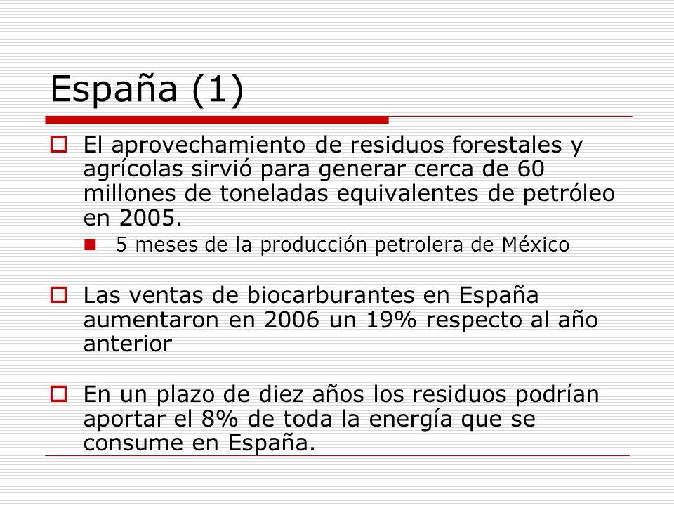 España (1) El aprovechamiento de residuos forestales y agrícolas sirvió para generar cerca de 60 millones de toneladas equivalentes de petróleo en 2005.