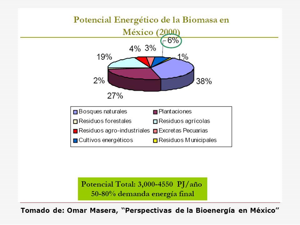 Tomado de: Omar Masera, Perspectivas de la Bioenergía en México