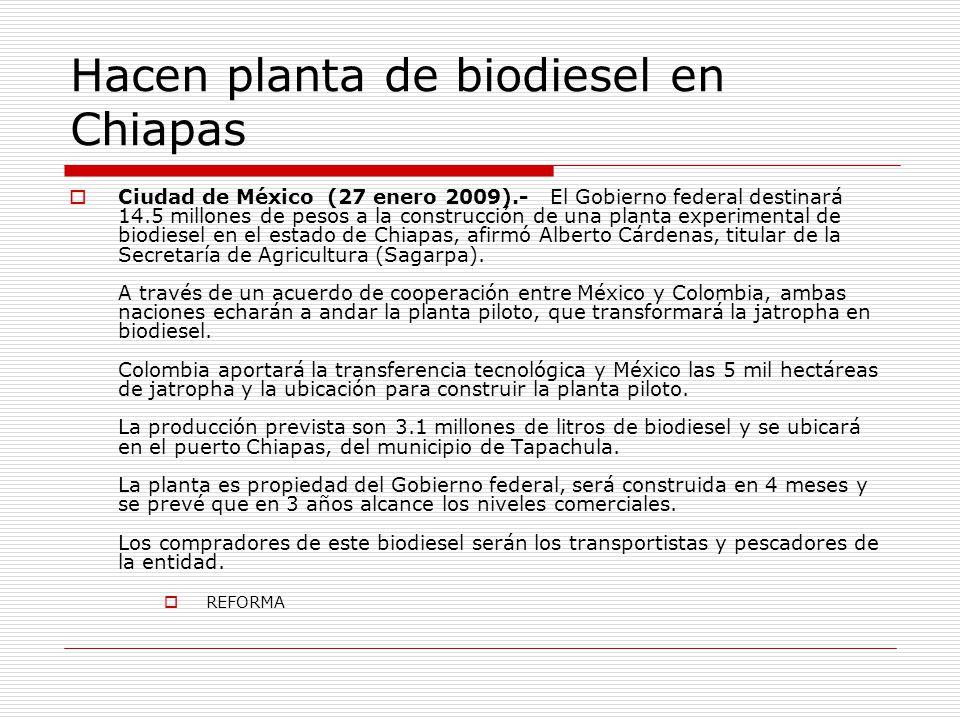Hacen planta de biodiesel en Chiapas Ciudad de México (27 enero 2009).- El Gobierno federal destinará 14.5 millones de pesos a la construcción de una planta experimental de biodiesel en el estado de Chiapas, afirmó Alberto Cárdenas, titular de la Secretaría de Agricultura (Sagarpa).