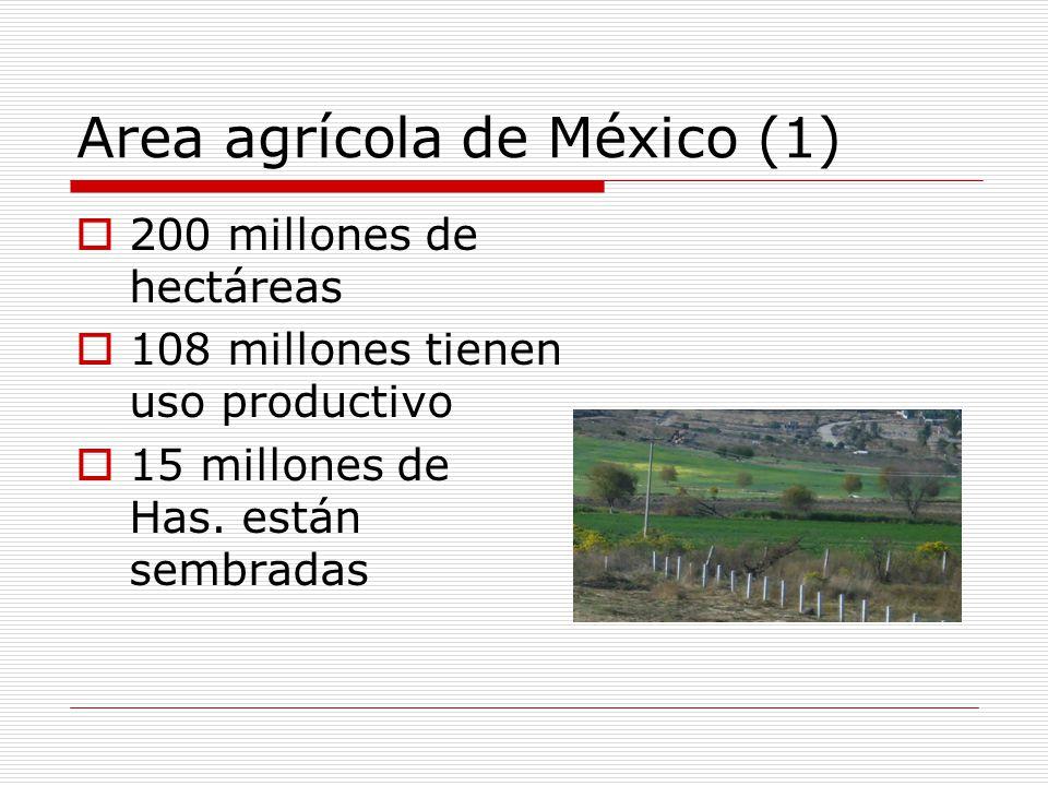 Area agrícola de México (1) 200 millones de hectáreas 108 millones tienen uso productivo 15 millones de Has.