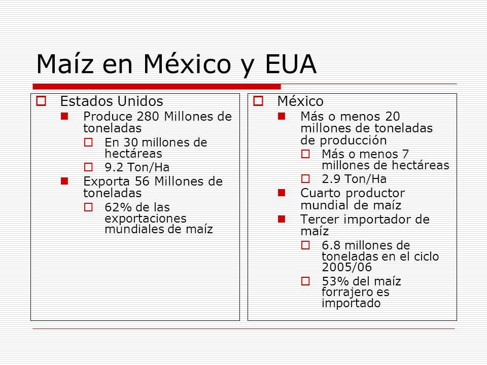 Maíz en México y EUA Estados Unidos Produce 280 Millones de toneladas En 30 millones de hectáreas 9.2 Ton/Ha Exporta 56 Millones de toneladas 62% de las exportaciones mundiales de maíz México Más o menos 20 millones de toneladas de producción Más o menos 7 millones de hectáreas 2.9 Ton/Ha Cuarto productor mundial de maíz Tercer importador de maíz 6.8 millones de toneladas en el ciclo 2005/06 53% del maíz forrajero es importado