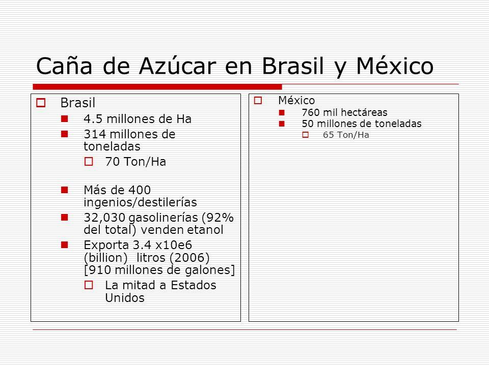 Caña de Azúcar en Brasil y México Brasil 4.5 millones de Ha 314 millones de toneladas 70 Ton/Ha Más de 400 ingenios/destilerías 32,030 gasolinerías (92% del total) venden etanol Exporta 3.4 x10e6 (billion) litros (2006) [910 millones de galones] La mitad a Estados Unidos México 760 mil hectáreas 50 millones de toneladas 65 Ton/Ha