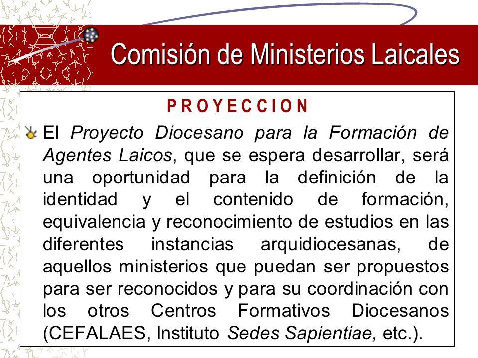 P R O Y E C C I O N El Proyecto Diocesano para la Formación de Agentes Laicos, que se espera desarrollar, será una oportunidad para la definición de l