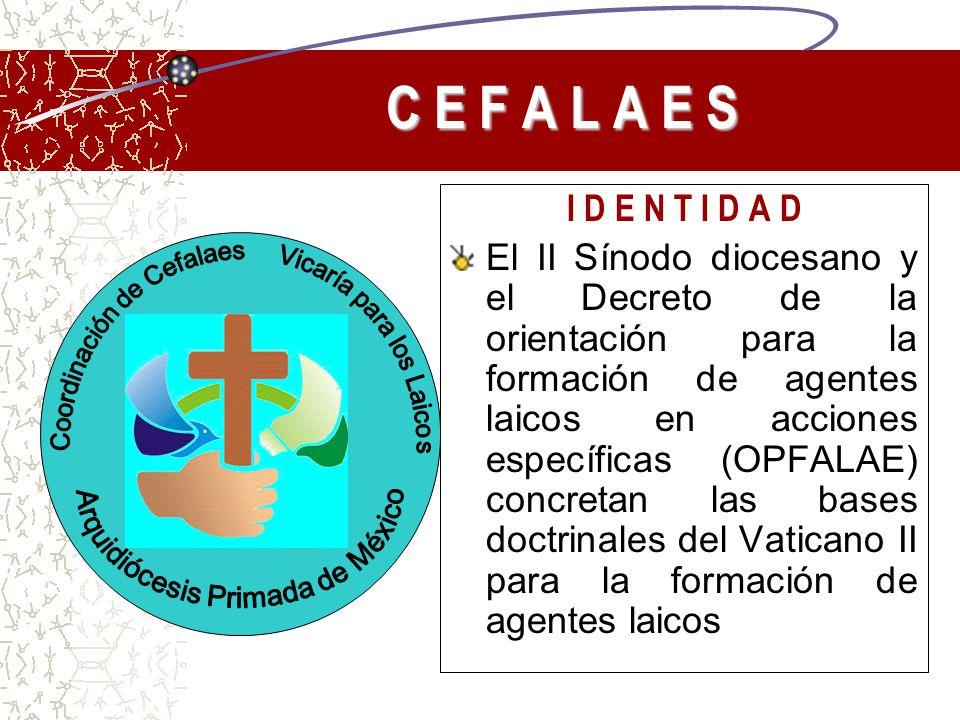 C E F A L A E S I D E N T I D A D El II Sínodo diocesano y el Decreto de la orientación para la formación de agentes laicos en acciones específicas (O