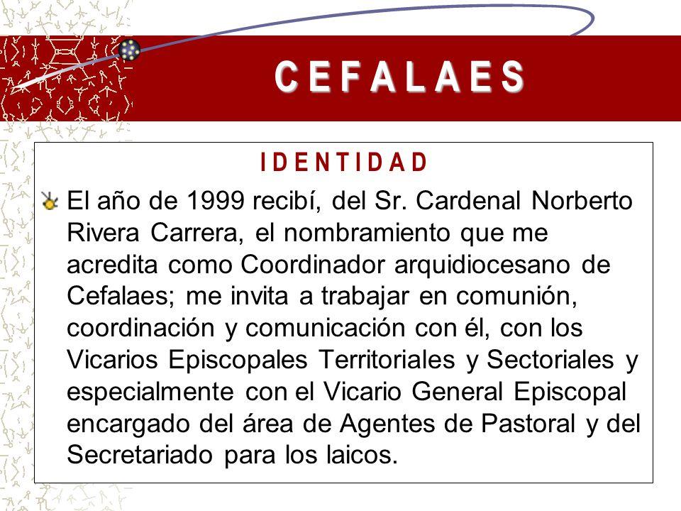 I D E N T I D A D El año de 1999 recibí, del Sr. Cardenal Norberto Rivera Carrera, el nombramiento que me acredita como Coordinador arquidiocesano de