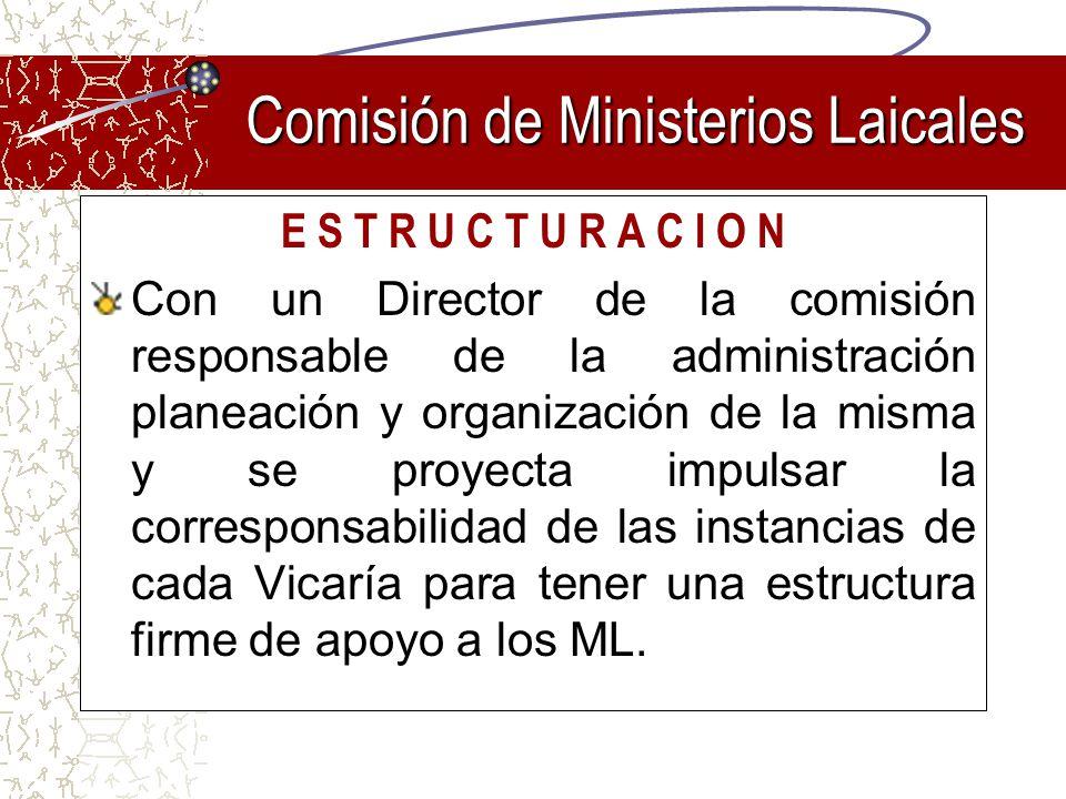 E S T R U C T U R A C I O N Con un Director de la comisión responsable de la administración planeación y organización de la misma y se proyecta impuls