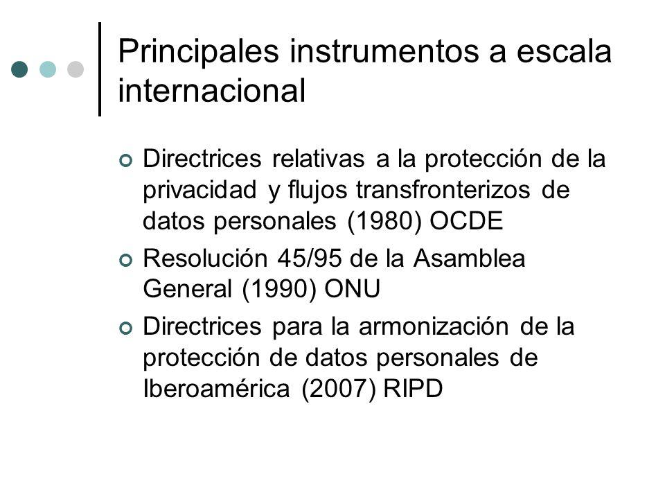 Principales instrumentos a escala internacional Directrices relativas a la protección de la privacidad y flujos transfronterizos de datos personales (1980) OCDE Resolución 45/95 de la Asamblea General (1990) ONU Directrices para la armonización de la protección de datos personales de Iberoamérica (2007) RIPD