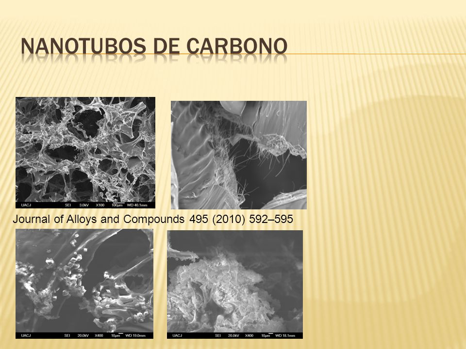 Journal of Alloys and Compounds 495 (2010) 592–595