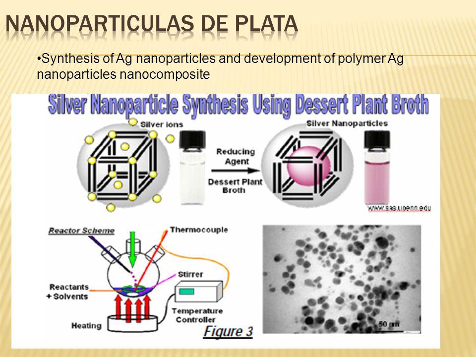 SEM Images of Scaffolds for Biomedicla Applications a) quitosan, b) quitosan/ silver (0.1 % AgNPs), c) nanocompósito quitosana/plata (0.2 % AgNPs).