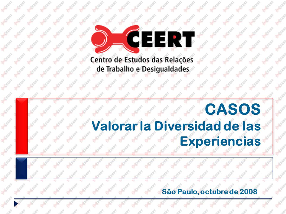 CASOS Valorar la Diversidad de las Experiencias São Paulo, octubre de 2008