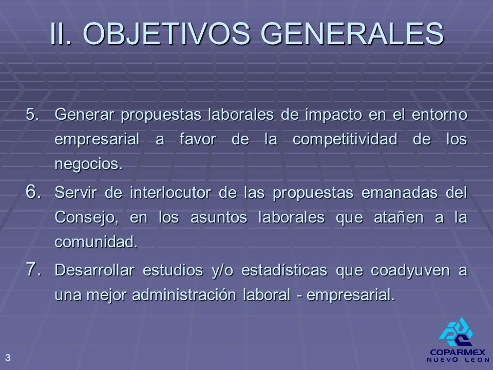 VI.OBJETIVOS OPERATIVOS 2007 I.