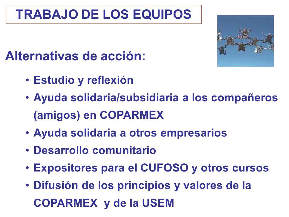 TRABAJO DE LOS EQUIPOS Alternativas de acción: Estudio y reflexión Ayuda solidaria/subsidiaria a los compañeros (amigos) en COPARMEX Ayuda solidaria a