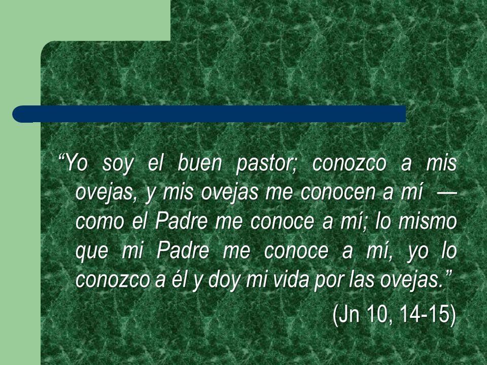 Yo soy el buen pastor; conozco a mis ovejas, y mis ovejas me conocen a mí como el Padre me conoce a mí; lo mismo que mi Padre me conoce a mí, yo lo co