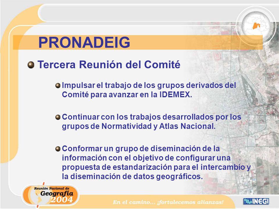 Tercera Reunión del Comité Impulsar el trabajo de los grupos derivados del Comité para avanzar en la IDEMEX.