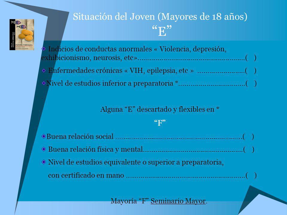 Situación del Joven (Mayores de 18 años) E Indicios de conductas anormales « Violencia, depresión, exhibicionismo, neurosis, etc».....................
