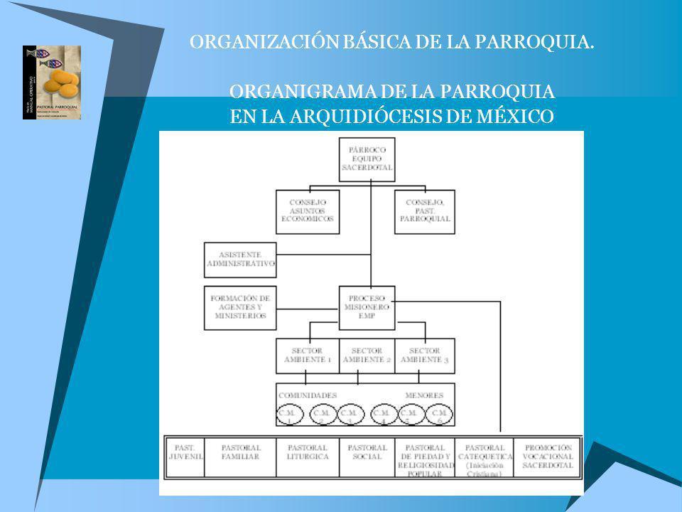 ORGANIZACIÓN BÁSICA DE LA PARROQUIA. ORGANIGRAMA DE LA PARROQUIA EN LA ARQUIDIÓCESIS DE MÉXICO