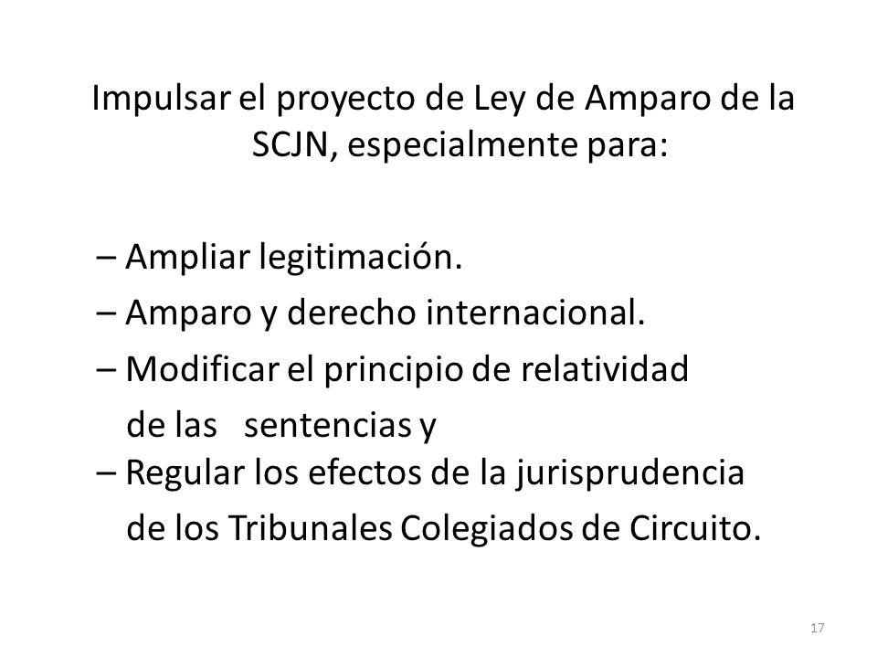 Impulsar el proyecto de Ley de Amparo de la SCJN, especialmente para: – Ampliar legitimación. – Amparo y derecho internacional. – Modificar el princip