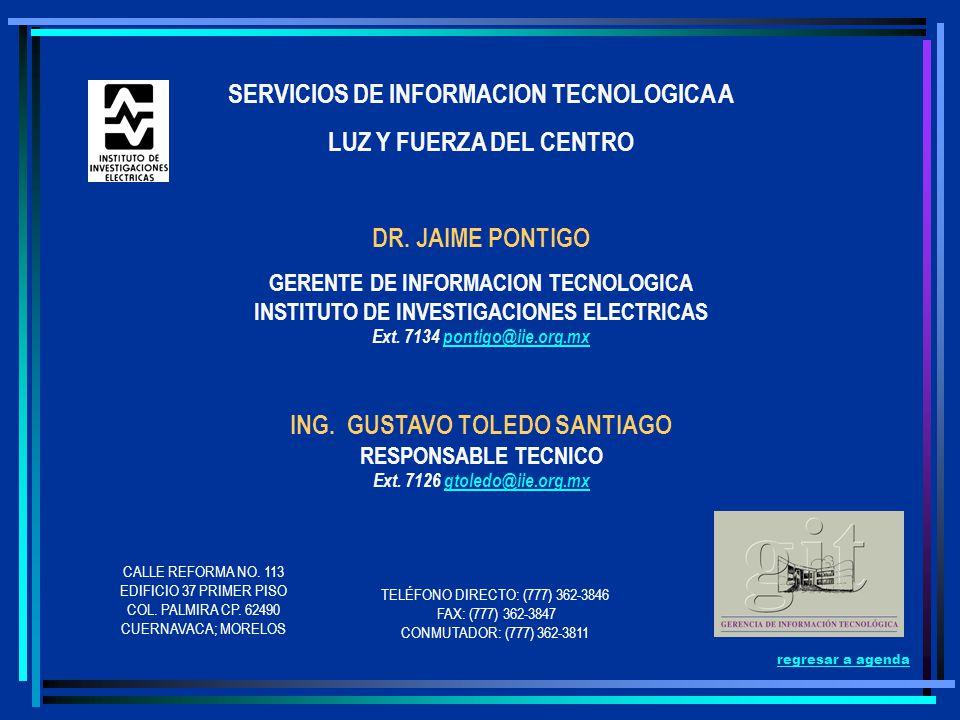 SERVICIOS DE INFORMACION TECNOLOGICA A LUZ Y FUERZA DEL CENTRO DR. JAIME PONTIGO GERENTE DE INFORMACION TECNOLOGICA INSTITUTO DE INVESTIGACIONES ELECT