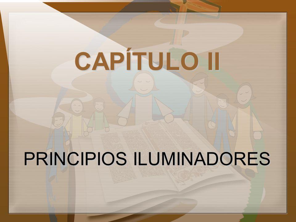 CAPÍTULO II PRINCIPIOS ILUMINADORES