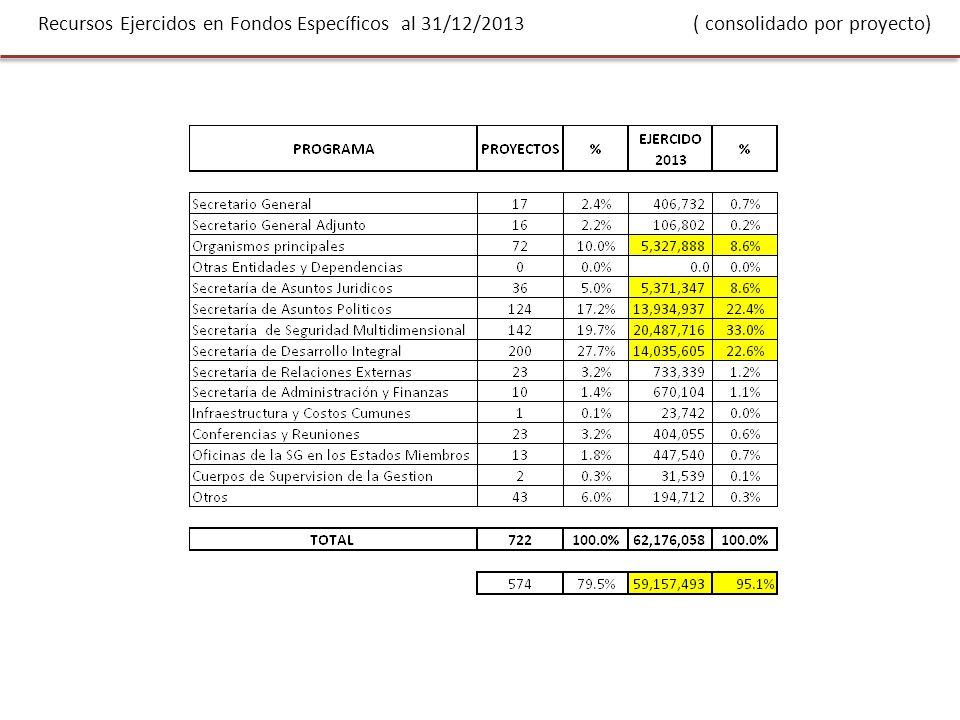 Recursos Ejercidos en Fondos Específicos al 31/12/2013 ( consolidado por proyecto)