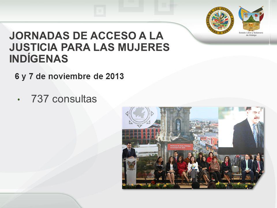 JORNADAS DE ACCESO A LA JUSTICIA PARA LAS MUJERES INDÍGENAS 6 y 7 de noviembre de 2013 737 consultas