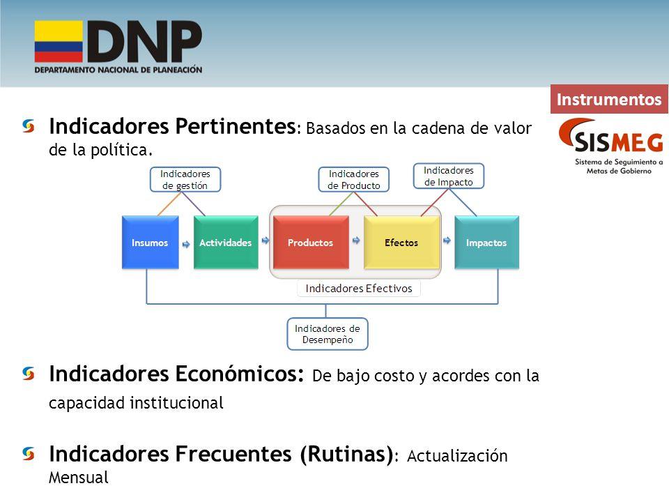 Instrumentos Indicadores Pertinentes : Basados en la cadena de valor de la política. Indicadores Económicos: De bajo costo y acordes con la capacidad