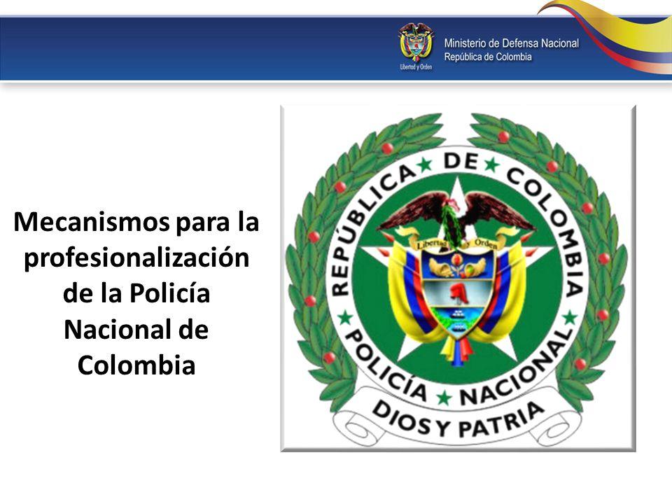 Mecanismos para la profesionalización de la Policía Nacional de Colombia