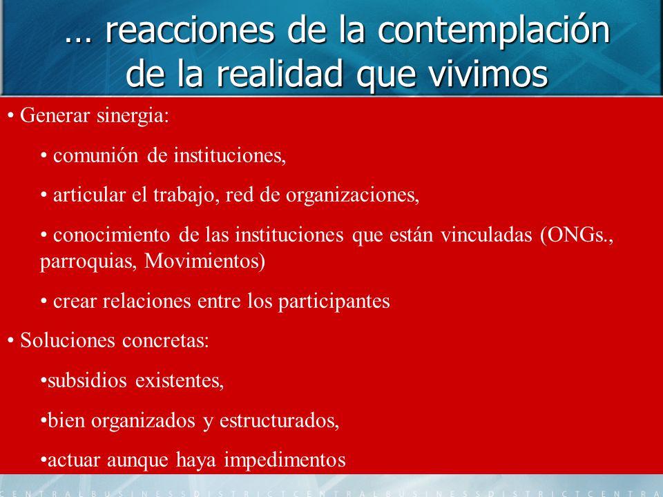 … reacciones de la contemplación de la realidad que vivimos Generar sinergia: comunión de instituciones, articular el trabajo, red de organizaciones,