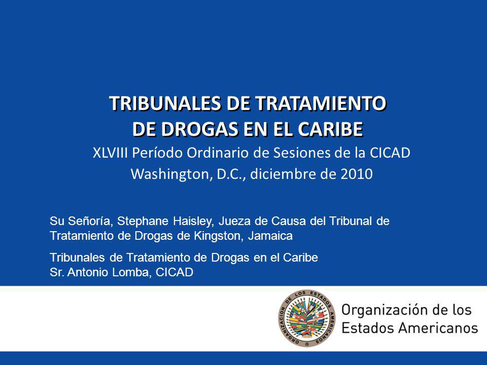 Roles en el DTC Juez Juez de Paz Fiscal Proveedor de tratamiento Funcionario de libertad condicional Asesor Abogado defensor Oficial de policía Secretario Administrativo