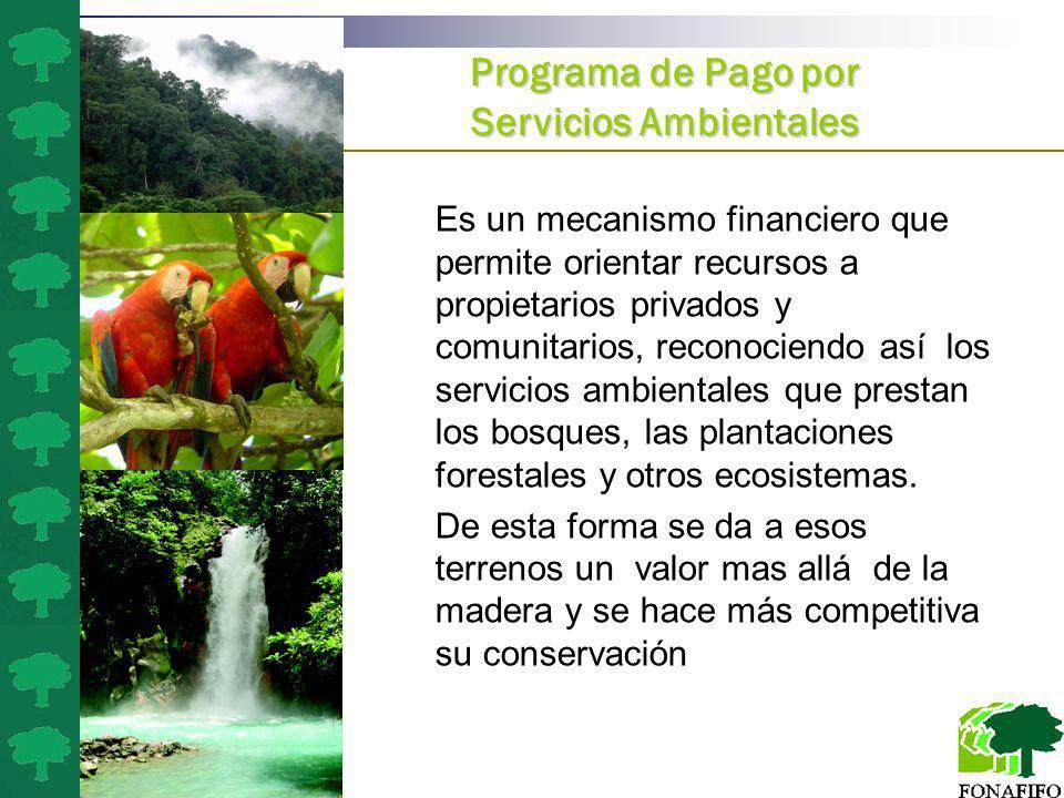 a)El ambiente es patrimonio común de todos los habitantes de la Nación, con las excepciones que establezcan la Constitución Política, los convenios in