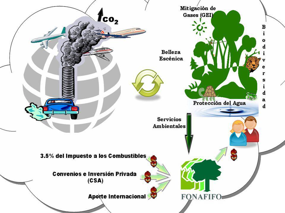520 mil hectáreas con PSA entre 1997 - 2006