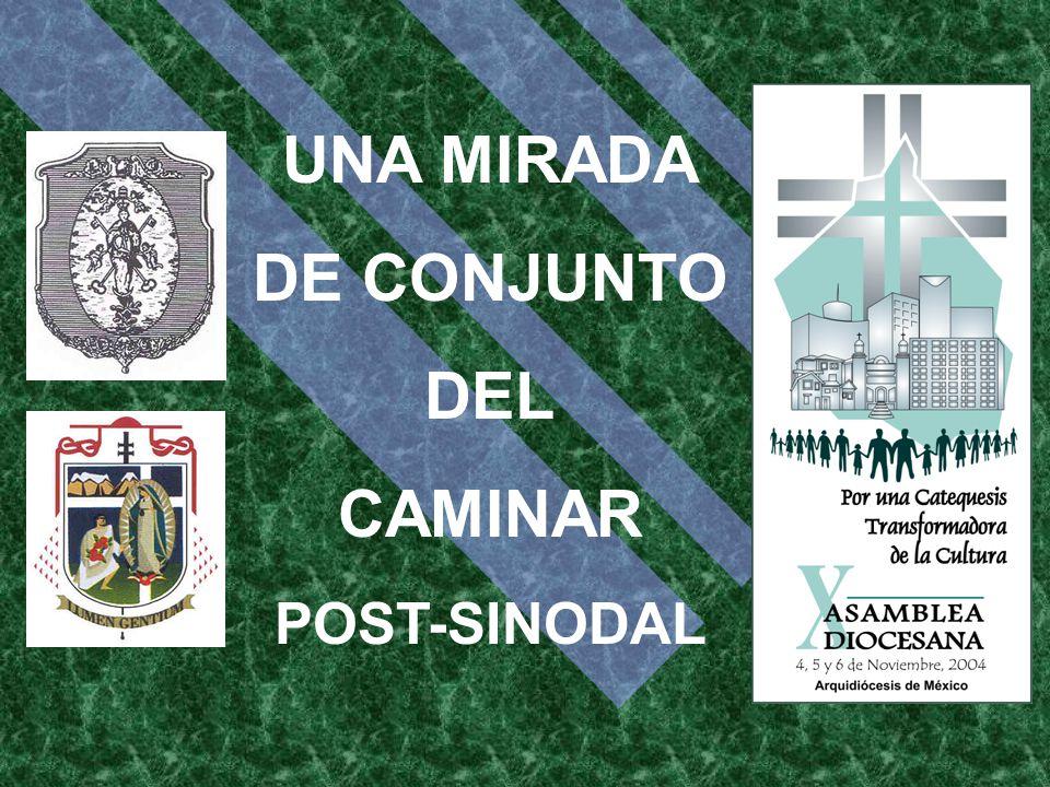 UNA MIRADA DE CONJUNTO DEL CAMINAR POST-SINODAL