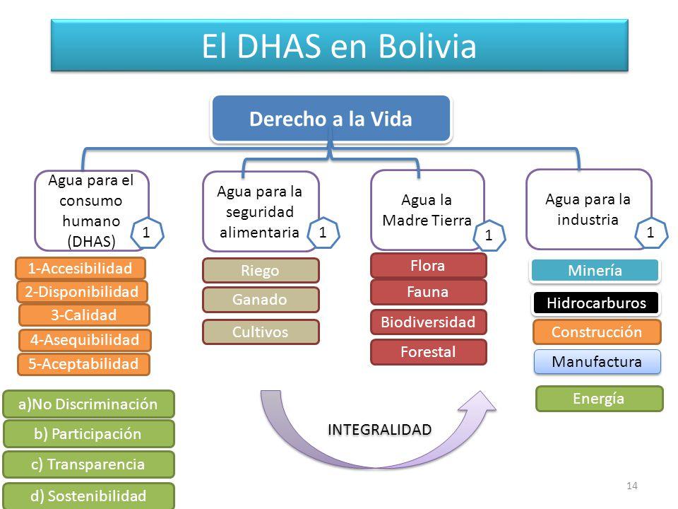 El DHAS en Bolivia Derecho a la Vida Agua para el consumo humano (DHAS) Agua para la seguridad alimentaria Agua la Madre Tierra Agua para la industria 1-Accesibilidad Riego Flora Fauna Biodiversidad 2-Disponibilidad 3-Calidad 4-Asequibilidad 5-Aceptabilidad a)No Discriminación c) Transparencia b) Participación d) Sostenibilidad Minería Hidrocarburos Construcción Forestal Manufactura Energía 1 1 1 1 Ganado Cultivos INTEGRALIDAD 14
