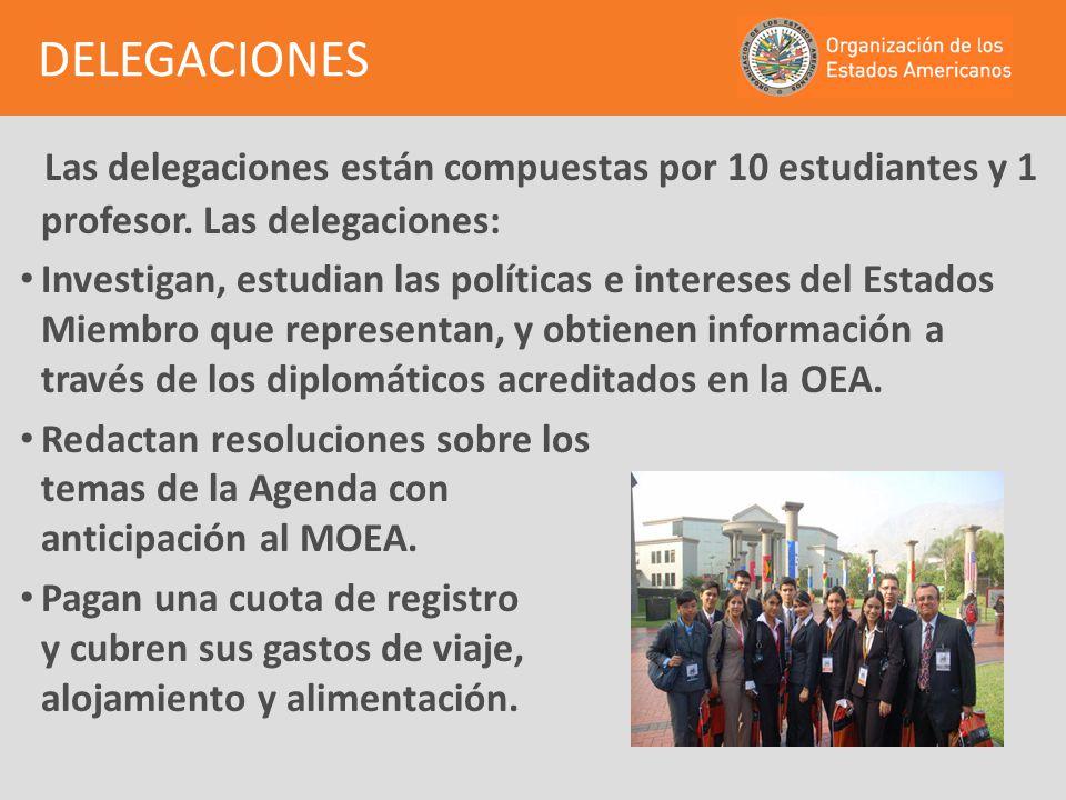 DELEGACIONES Las delegaciones están compuestas por 10 estudiantes y 1 profesor. Las delegaciones: Investigan, estudian las políticas e intereses del E