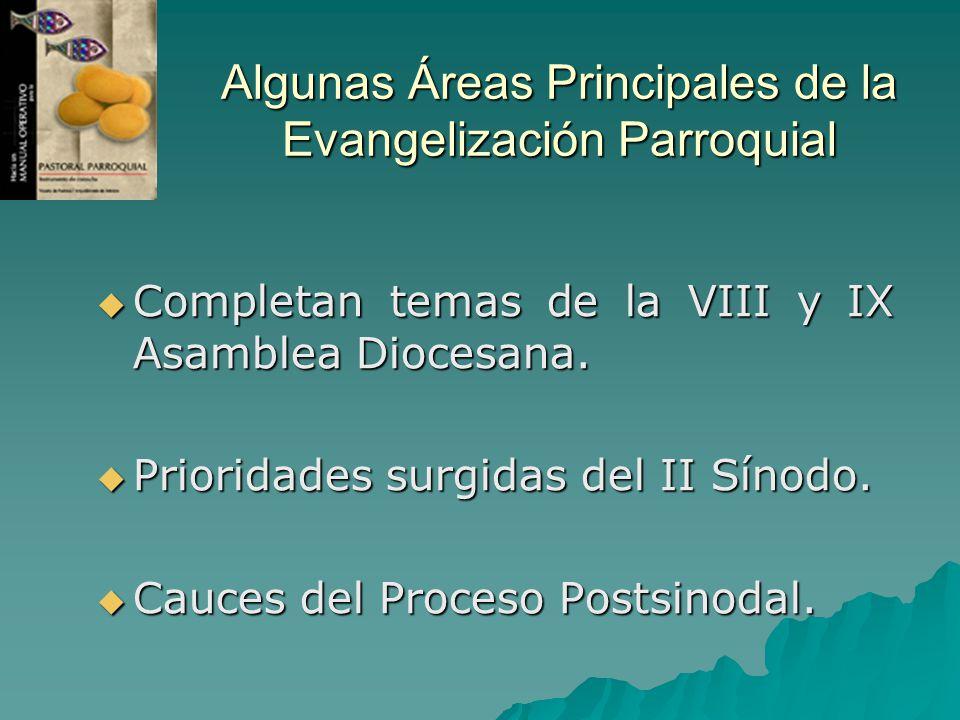 Algunas Áreas Principales de la Evangelización Parroquial Completan temas de la VIII y IX Asamblea Diocesana. Completan temas de la VIII y IX Asamblea