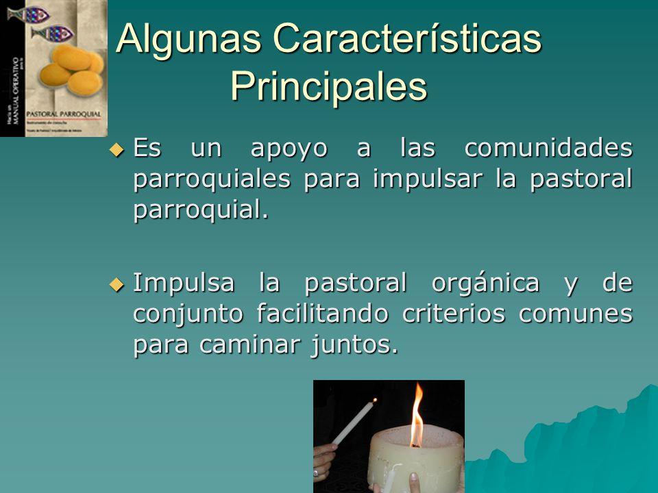 Algunas Características Principales Es un apoyo a las comunidades parroquiales para impulsar la pastoral parroquial. Es un apoyo a las comunidades par